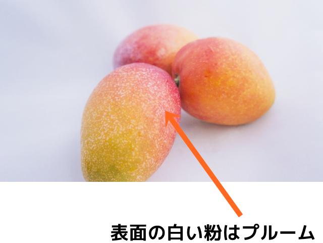 マンゴーの表面の白い粉はプルーム