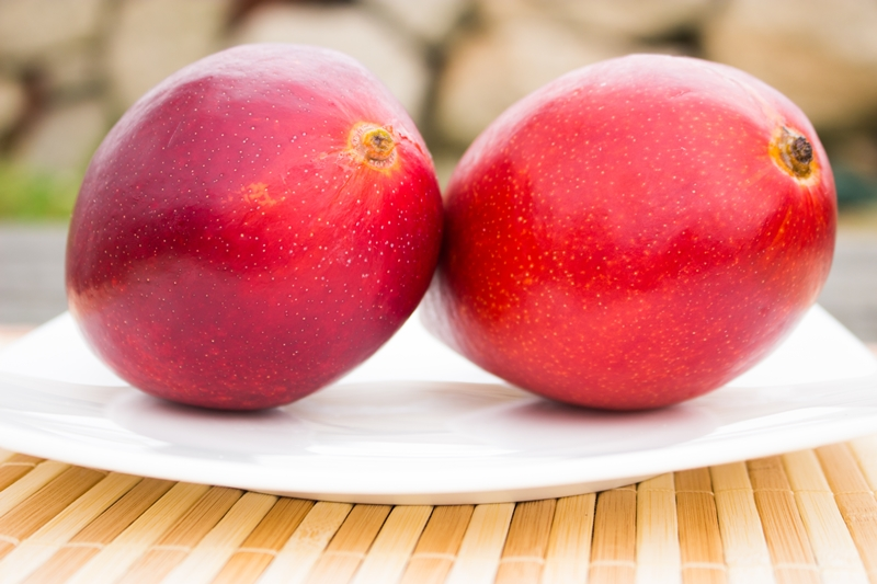 アップルマンゴー通販1kgセット