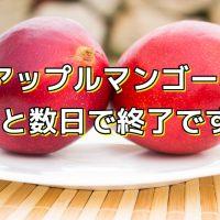アップルマンゴー、あと数日で終了です!