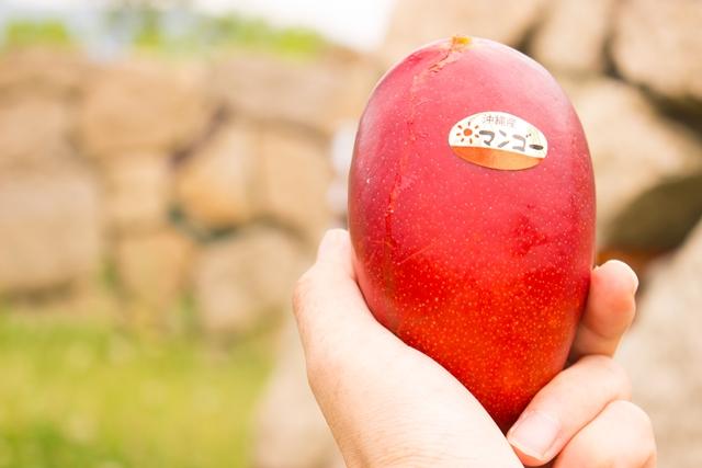 鮮やかなアップルマンゴーを通販でお楽しみください