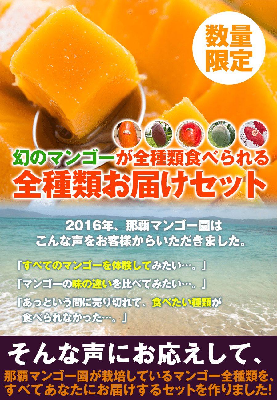 幻のマンゴーを通販で全種類お届けします